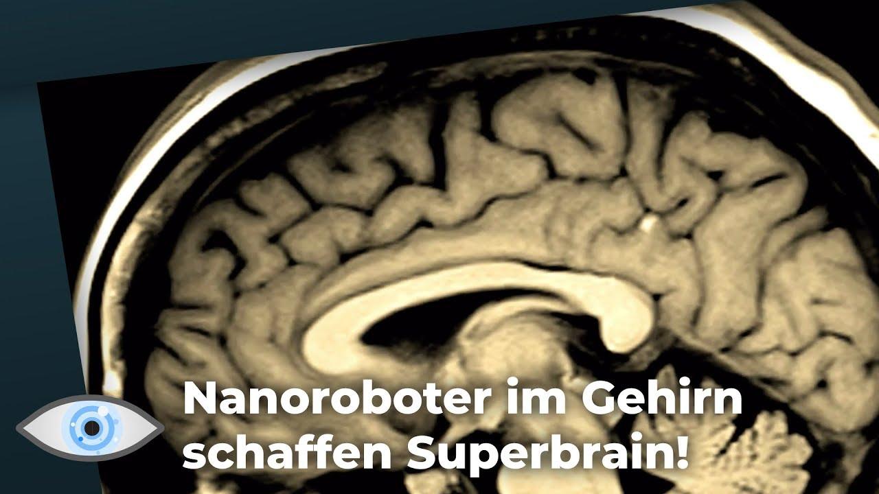 Werden unsere Gehirne bald mit dem Internet verbunden? Die Menschheit als Superbrain!