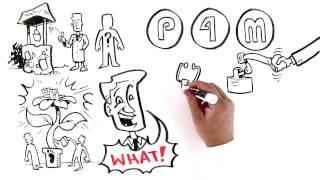 p4m introduction