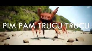 Pim Pam Trucu Trucu- Vídeo Clip cangrejos