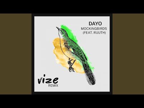 Mockingbirds (feat. Ruuth) (VIZE Remix)