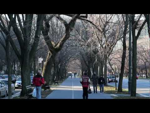 ^MuniNYC - Franklin Avenue & Eastern Parkway (Crown Heights, Brooklyn 11225)
