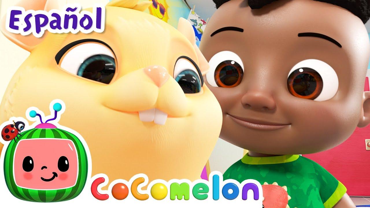 CoComelon en Español | La mascota de la clase | Canciones Infantiles y de Cuna
