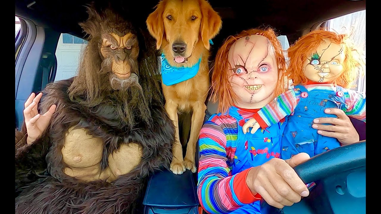 Chucky Surprises Bigfoot & Puppy with Car Ride Chase!