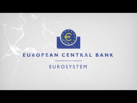 The European Central Bank Experience