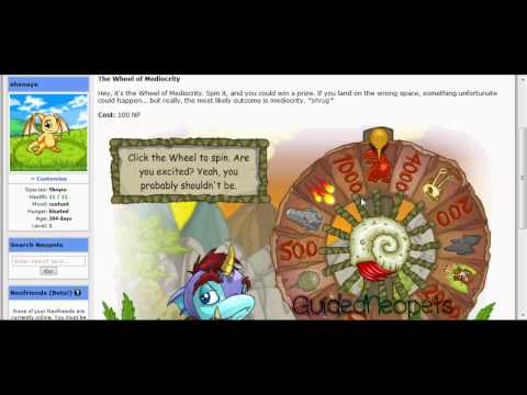 Neopets Tutorial (The Basics)