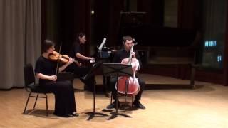 Amarok Ensemble - Beethoven: Piano Trio Op.1 No.3 in C Minor (1st movement)