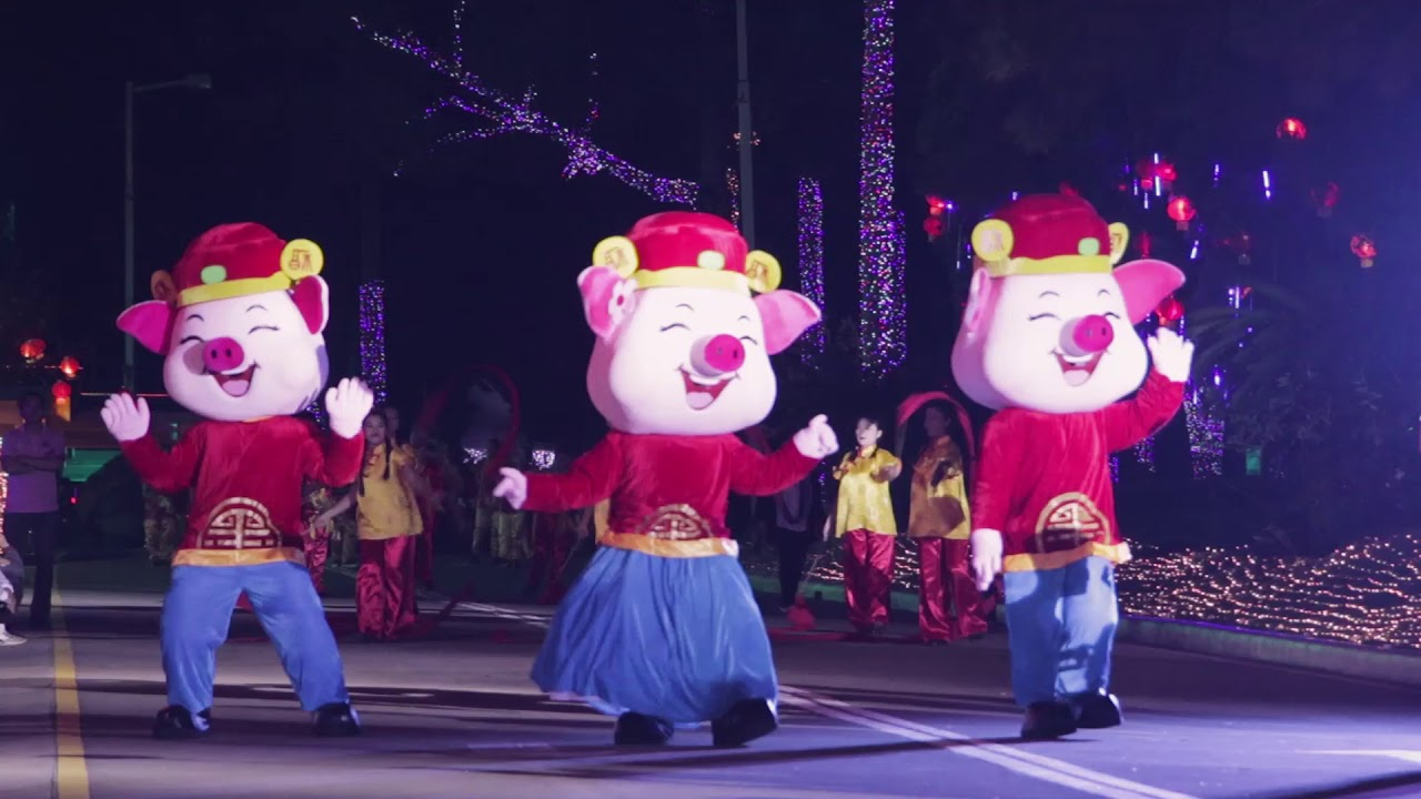 Image result for chinese lunar year 2019 in Davao City pic