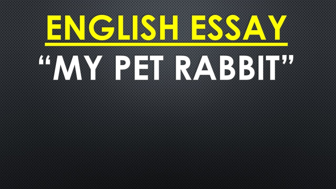 English Essay My Pet Rabbit  Youtube English Essay My Pet Rabbit