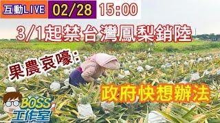 【BOSS工作室互動LIVE】20210228 3/1起禁台灣鳳梨銷陸 果農哀嚎:政府快想辦法