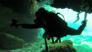 Diving Casa Cenote, Tulum Mexico