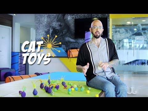 Jackson Galaxy Collection: Cat Toys, Puma Paw, Cat Dice, Bobbler & more