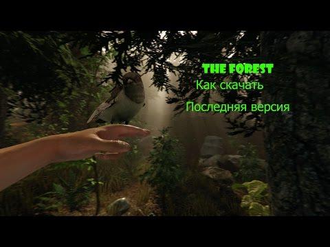 Как скачать The Forest последняя версия
