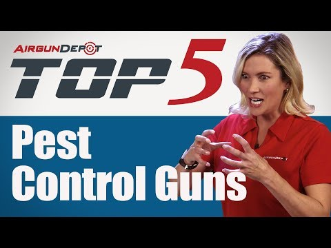 Top 5: Pest Control Guns