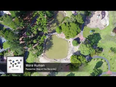 Passerine - More Human [FULL SONG]