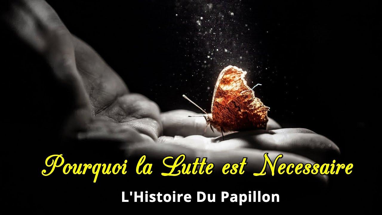 Pourquoi Ma Vie Est Une Lutte ? L'Histoire Du Papillon - YouTube