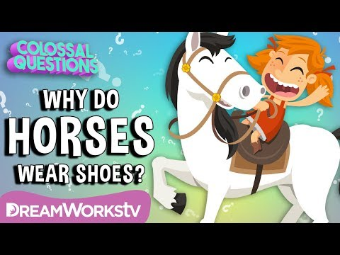 Why Do Horses Wear Shoes?   Spirit Riding Free presents COLOSSAL QUESTIONS