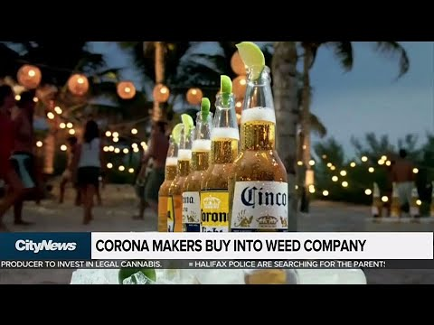 Business Report: Maker of Corona beer buys stake in Canadian marijuana company