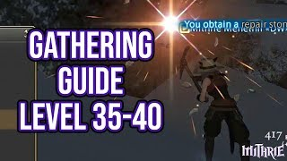 FFXIV 2.0 0095 Gathering Level 35-40 (Guide)