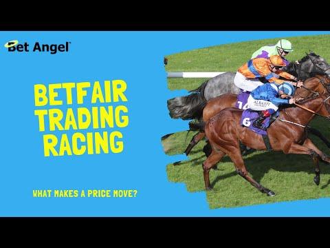 Risk free betting on betfair horse coin flip csgo betting analysis