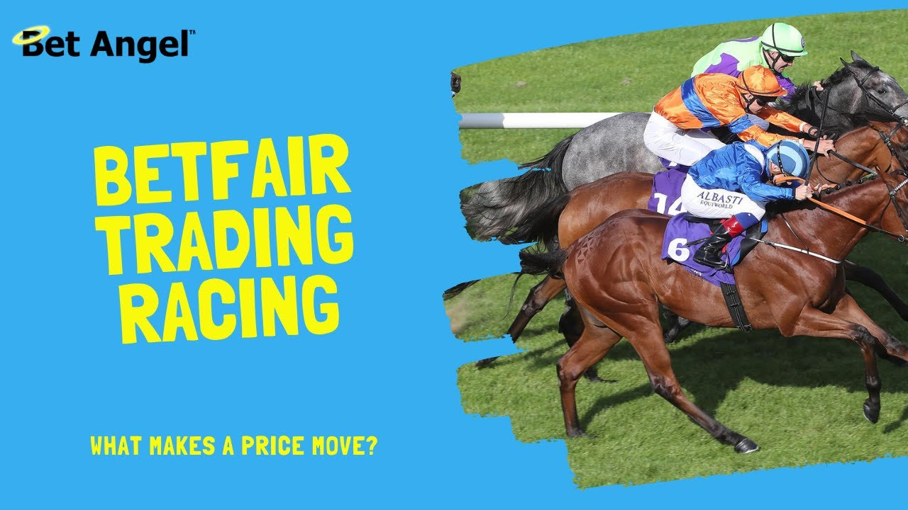 Horse racing lay betting explained variance sky bets pariuri sportive