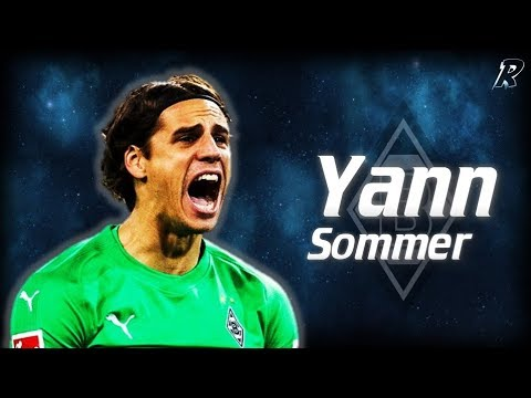 Yann Sommer ● Best Saves ●Amazing saves & skills show || Borussia Monchenglabach || HD 720p