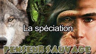 DARWIN AVAIT TORT !!! (lol, non) | La spéciation - Animaux CH.2 EP.10