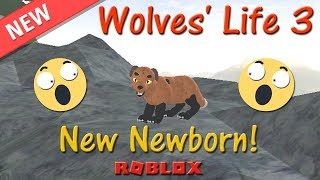 Roblox - Wolves' Life 3 - Newborn is HERE! - HD