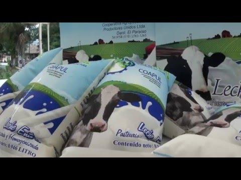 Productores de Jamastrán lanzan al mercado leche pasteurizada D' LECHE REAL