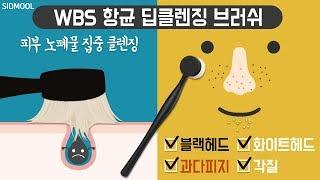 [시드물] WBS 항균 딥클렌징 …