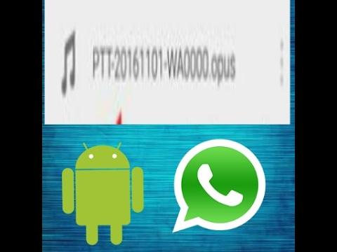 Como ouvir arquivos no formato opus do whatsapp no android