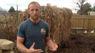 Why Does Back to Eden Gardening Work? -- with Lex Case