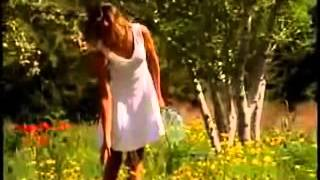 Video Sweet sixteen - The Furey's and Davey Arthur download MP3, 3GP, MP4, WEBM, AVI, FLV Juni 2017