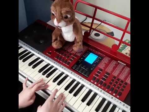 С днём рождения тебя. Пианино.Русский,английский,немецкий
