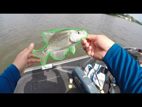 Tuckertown, NC - What A CRAPPIE Day! (fresh Crappie For Lunch)