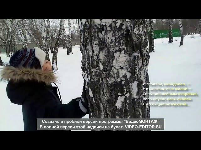 Изображение предпросмотра прочтения – АндрейЯковлев читает произведение «Чародейкою Зимою…» Ф.И.Тютчева