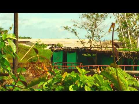 Artscape - Bajamar Ballad