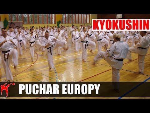 Kyokushin Karate European Cup 2016 - Mata 'C'