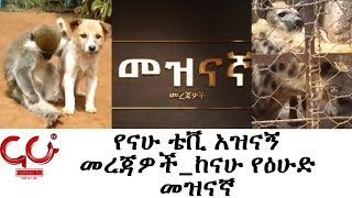 Nahoo Meznagna- የናሁ ቴቪ አዝናኝ መረጃዎች_ከናሁ የዕሁድ መዝናኛ - NAHOO TV