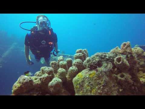 Lesleen 'M' Wreck Diving (Scuba St Lucia)