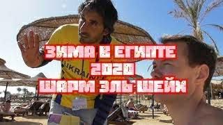 Пляж Пальма От Отеля SHARM INN AMAREIN обыск на входе Египет все включено Зима 2020