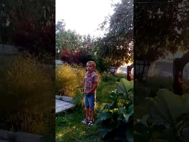 Изображение предпросмотра прочтения – ЗахарМукин читает произведение «Огород» (Трутнева Евгения)