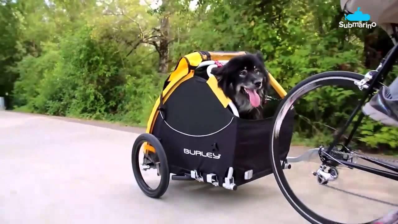 Tail Wagon Bike Trailer The Wagon