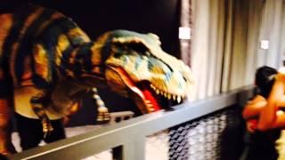 恐龍探險隊出發了,我們帶著我們的寫生本去白堊紀探險,多刺龍、雷龍、霸王龍、~連虛幻的噴火龍都有!這些經驗~我們將要把它拿到我們的教室中...