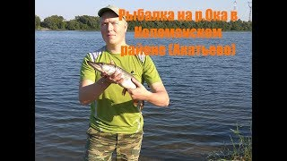 Рибалка на спінінг на р. Ока в Акатьево восени (Коломенський район)