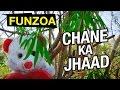 Chane Ka Jhaad | Funzoa Mimi Teddy Song | Funny Hindi Love Song