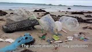 Oceanic Microplastics