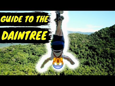 ULTIMATE GUIDE TO THE  DAINTREE RAINFOREST / TRAVEL GUIDE / AUSTRALIA🇦🇺