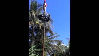Download Video BoKep Sexy abiss MP3 3GP MP4