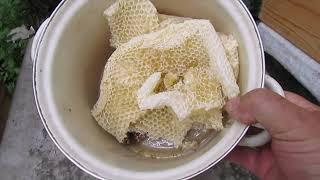 июль на пасеке - тестирование пчел, на пчел понюхалок во время взятка