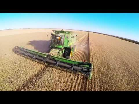 Harvest 2015 - Berggruen Farming